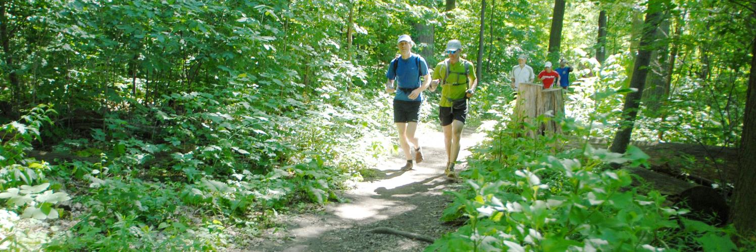 Haliburton Forest Trail Race